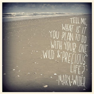 tell-me-what-is-it-you-plan-to-do-with-your-one-wild-and-precious-life-2